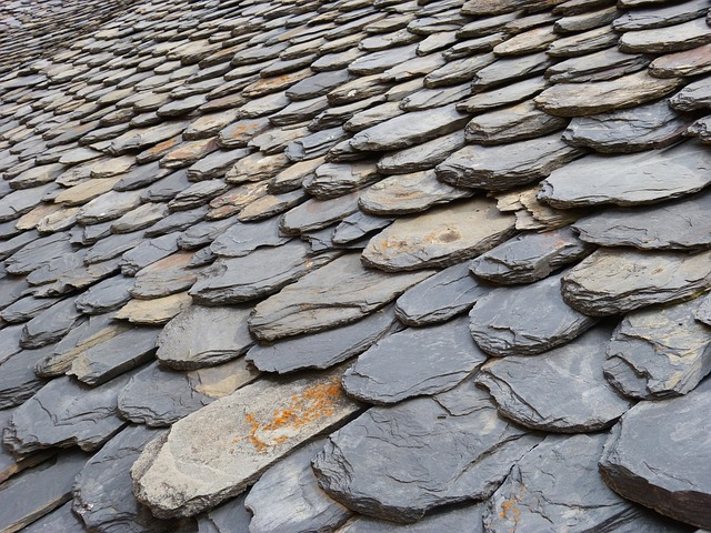 Slate Roof Texture
